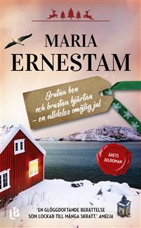 Boken Brutna ben och brustna hjärtan av Maria Ernestam.